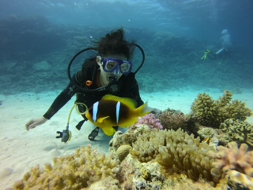 diving-hurghada-nemo