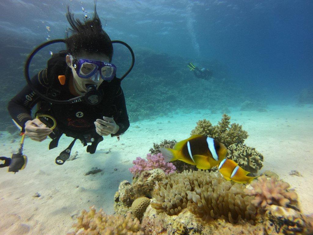 sukeldumine Hurghadas